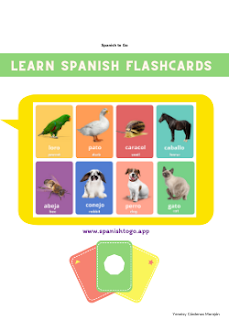 Spanish flashcards ebook