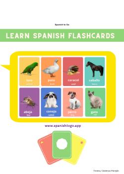 Basic Spanish flashcards