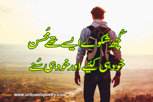 Mohsin Poetry In Urdu 2 Lines