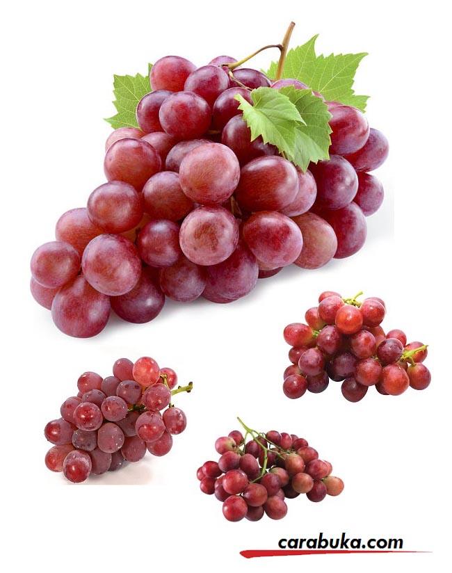 Tips Memilih Anggur Red Globe (Sensasi Kesegaran Warna Dan Rasa)