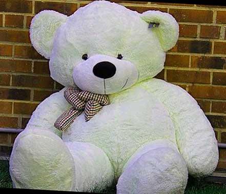 Teddy%2BBear%2BImages%2BPics%2BHD30