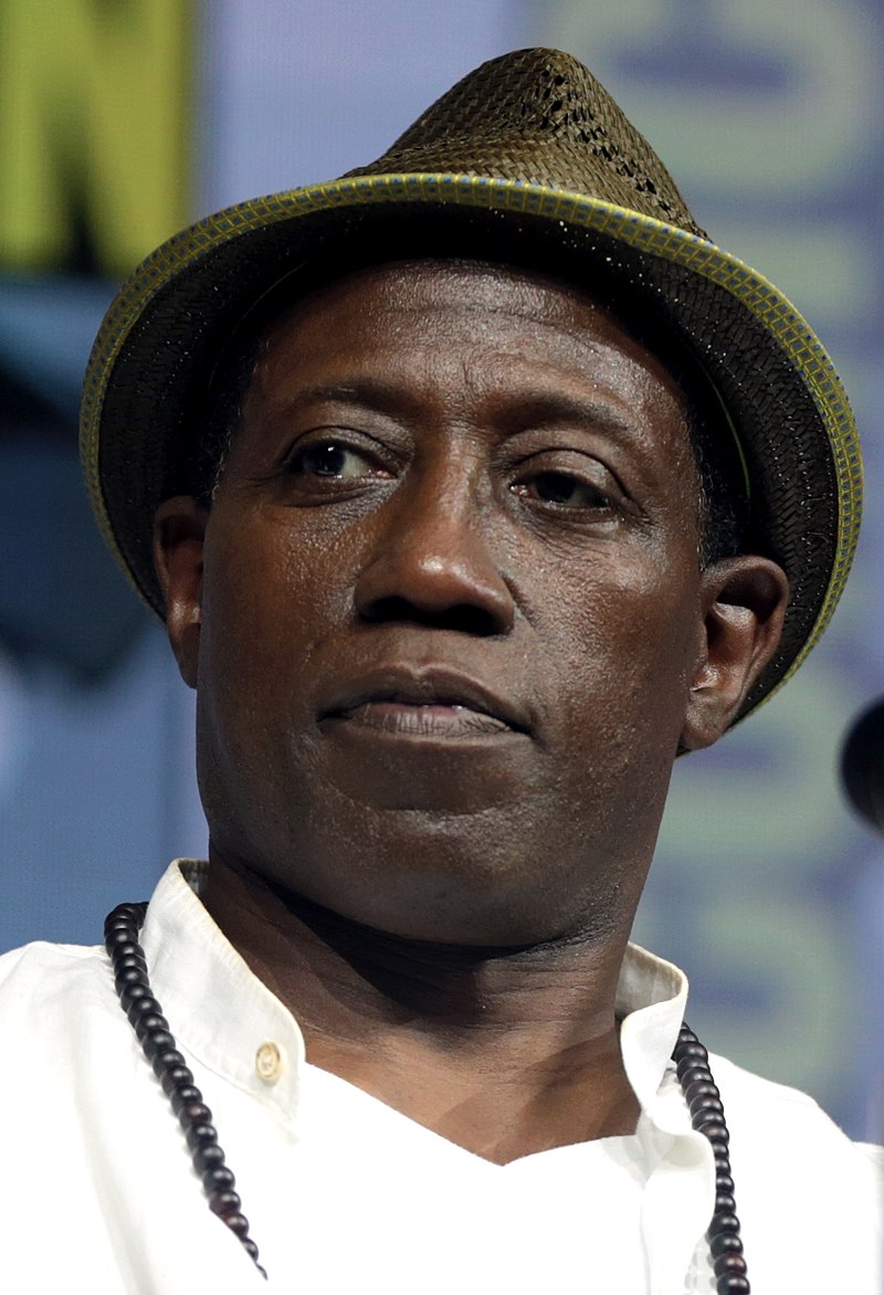 Top 10 Best Wesley Snipes Movies of all Time Ranked