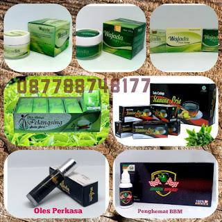 Distributor Agen Herballove