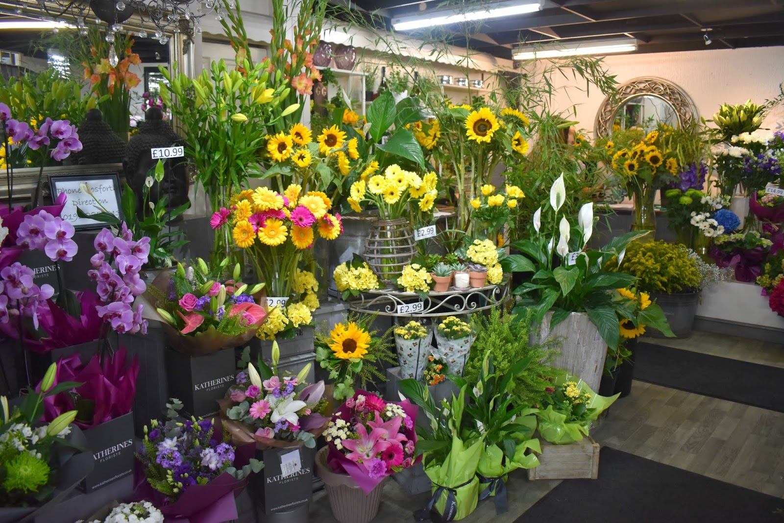Katherine's Florists Newcastle - Bubbles and Blooms