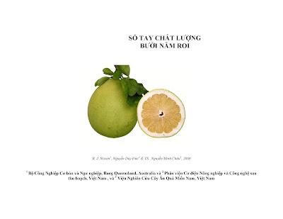 [EBOOK] SỔ TAY CHẤT LƯỢNG BƯỞI NĂM ROI, NHIỀU TÁC GIẢ, VIỆN NGHIÊN CỨU CÂY ĂN QUẢ MIỀN NAM