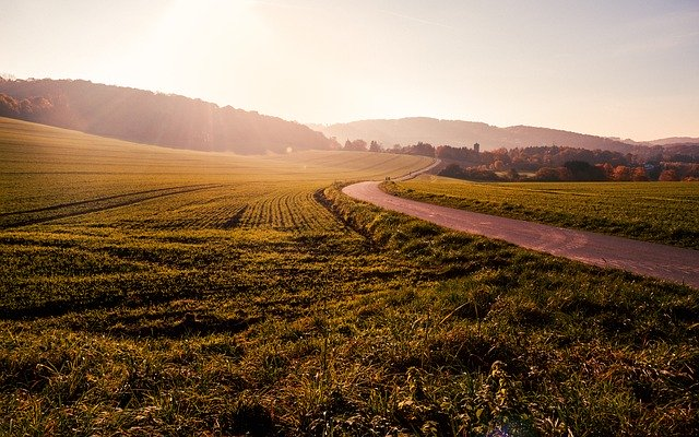 5 Tips Beli Tanah Warisan agar Terhindar dari Sengketa
