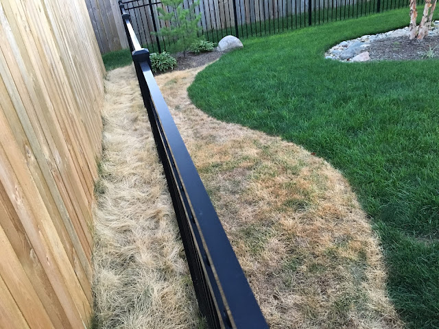 dead grass contrast clean edge landscaping bed