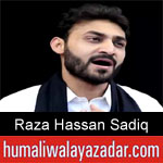 https://nohay.humaliwalayazadar.com/2019/05/raza-hassan-sadiq-noha-ayyam-e-ali.html