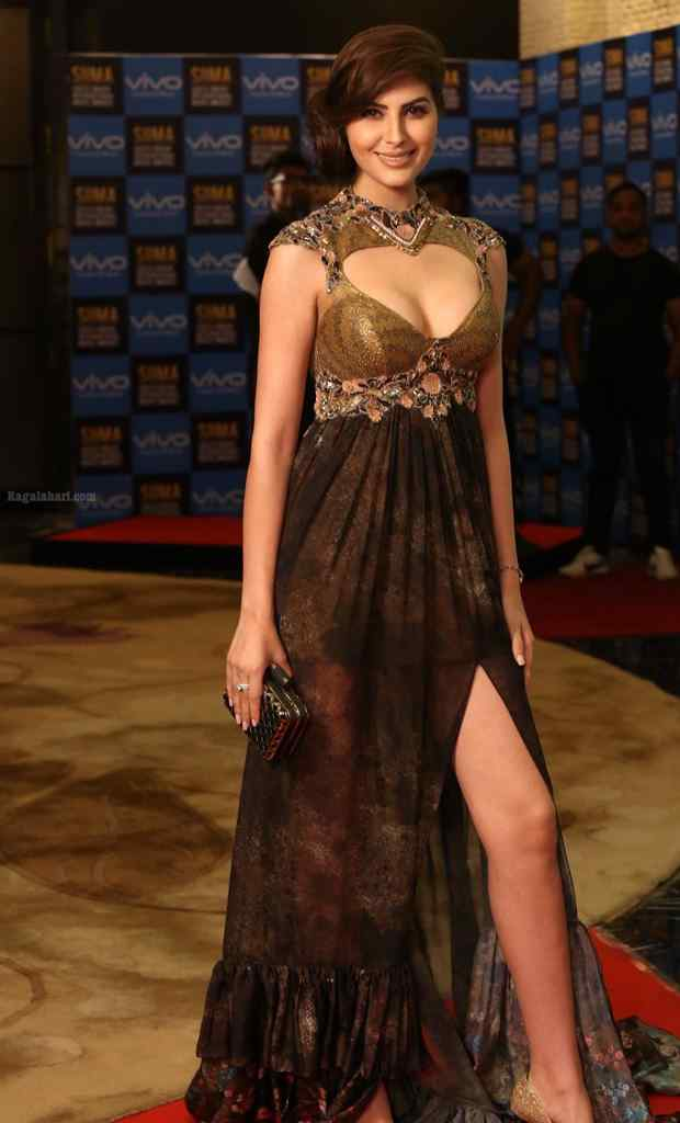 Naaz Norouzi At SIIMA Short Film Awards Gallery