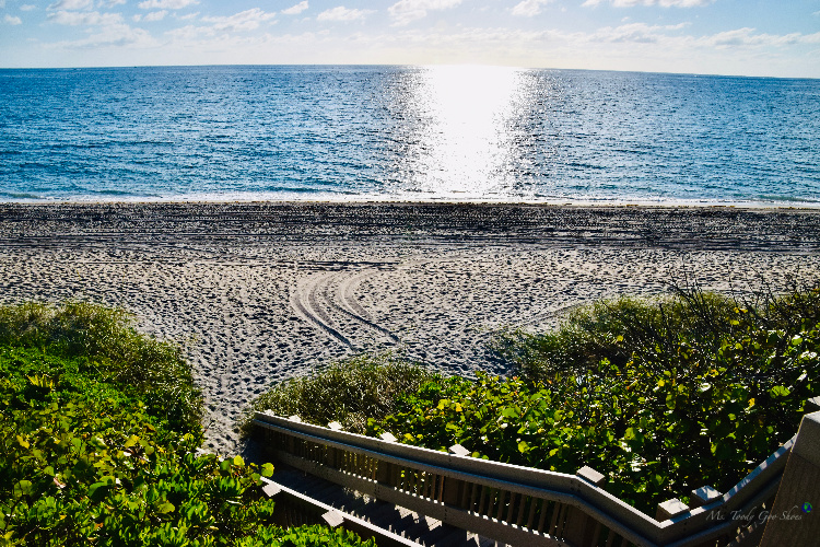 Beaches of Florida - Ms. Toody Goo Shoes