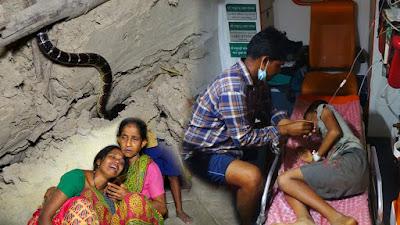 Gambar anak digigit ular weling mematikan