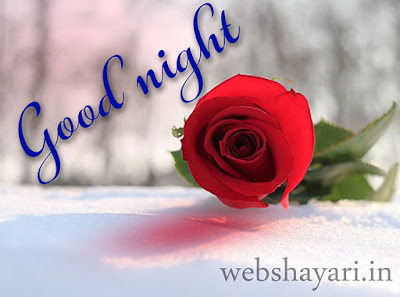 gulab good night ke bhoto pic