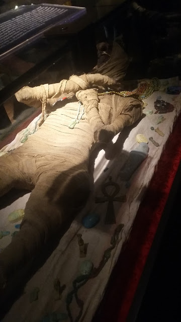 donna rita - por aí - museu egípcio itinerante