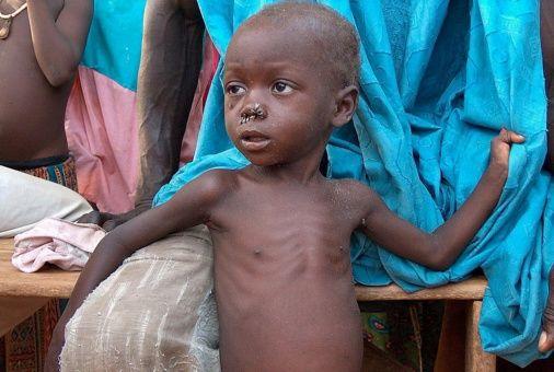 Combaten hambruna en Níger con 75 mil toneladas de alimentos