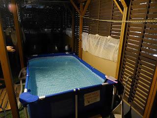 Zakoza Bulge Bar's pool for fundoshi wearers, Osaka, Japan.
