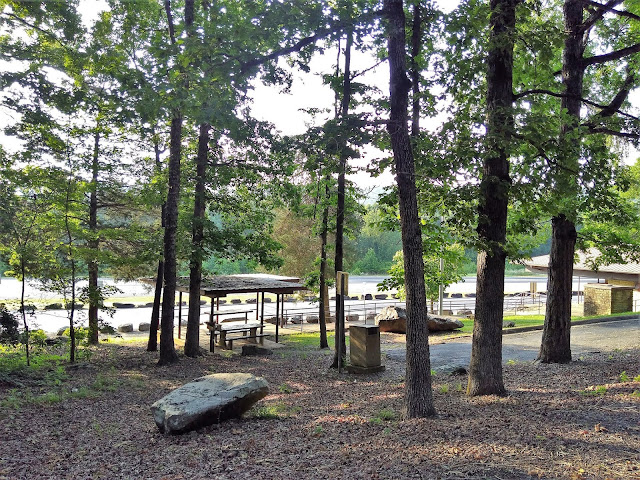 View from my campsite, Salado Rest Area, Highway 167, Arkansas. June 2020.
