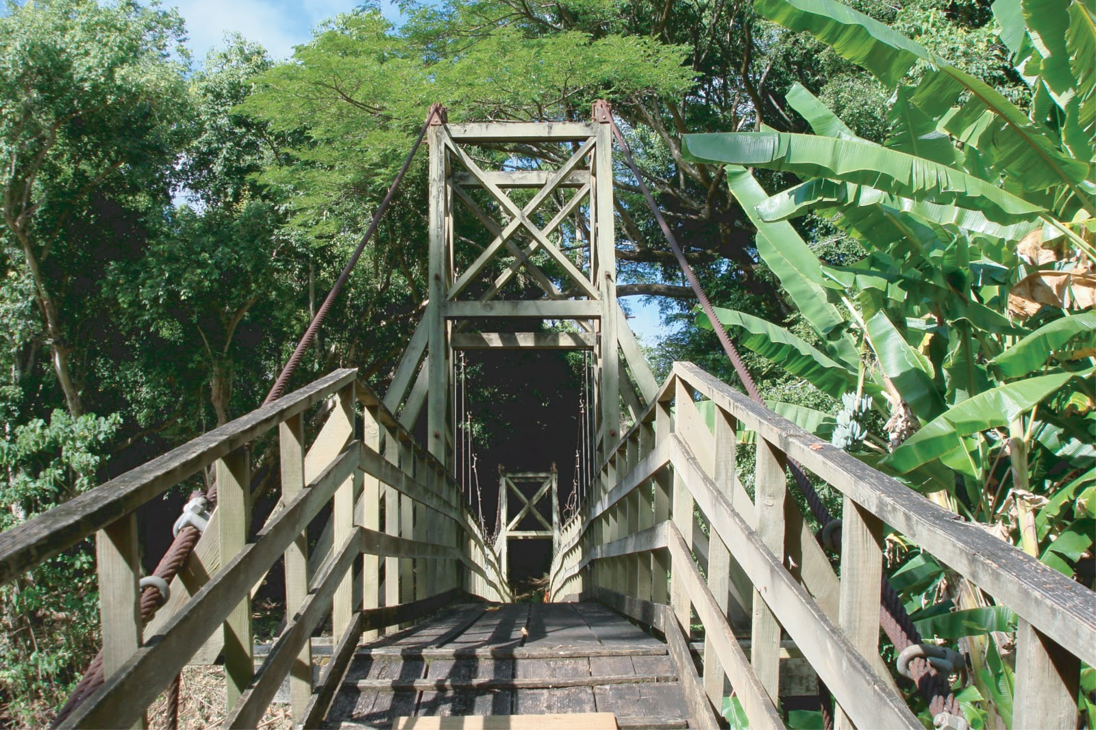 Historic Hawaii Foundation News Kapaia Swinging Bridge To