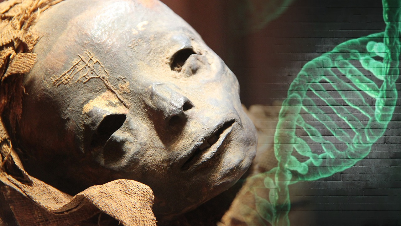 Científicos descifran por primera vez el ADN completo de momias de Egipto