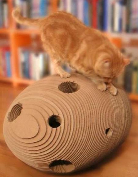 carton et chat 7