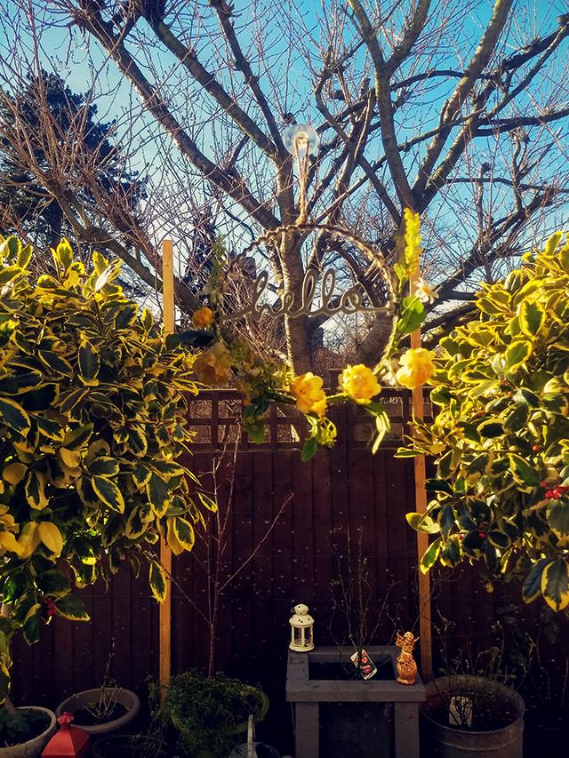 Hello garden