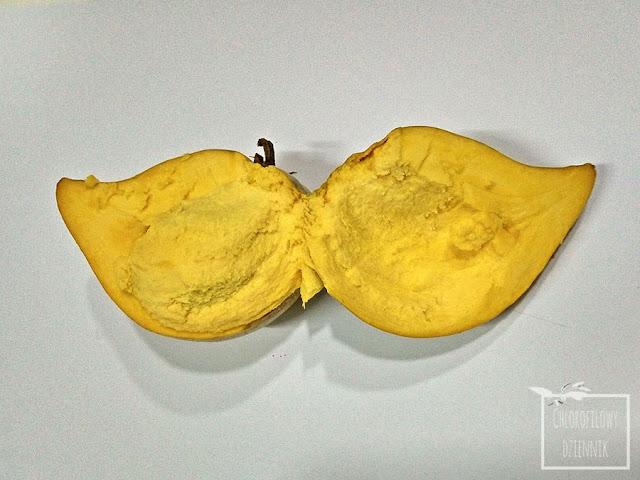 Canistel (Pouteria campechiana), eggfruit - pochodzenie, uprawa, wygląd, owoc, smak, jak smakuje canistel, jak wygląda owoc, dziwne, ciekawe owoce tropikalne amerykańskie, nasiona, pestka, duże nasiono, jak wysiać eggruita, owoc o smaku jajka.