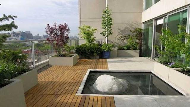 mewujudkan kolam ikan minimalis di rooftop