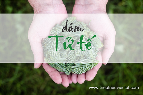 WORKSHOP-DAM-TU-TE-DU-AN-TRIEU-TRIEU-VIEC-TOT