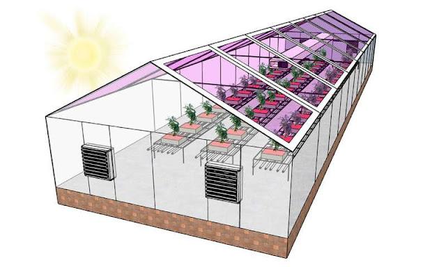 Yeni nesil seralar tamamen güneş enerjili olabilir