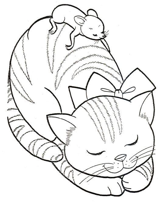 Tranh tô màu con mèo đang ngủ