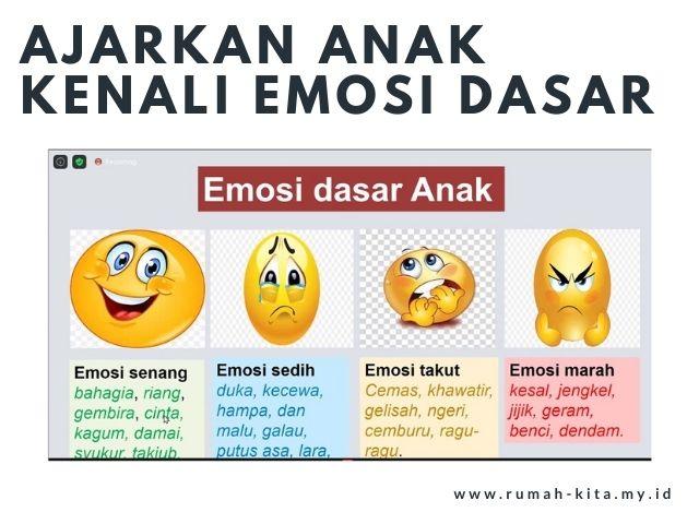 jenis emosi dasar