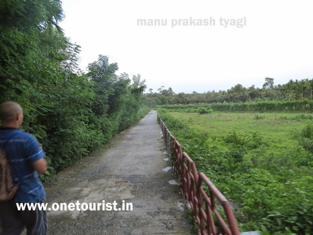 mangrove walk dhani nala rangat andaman