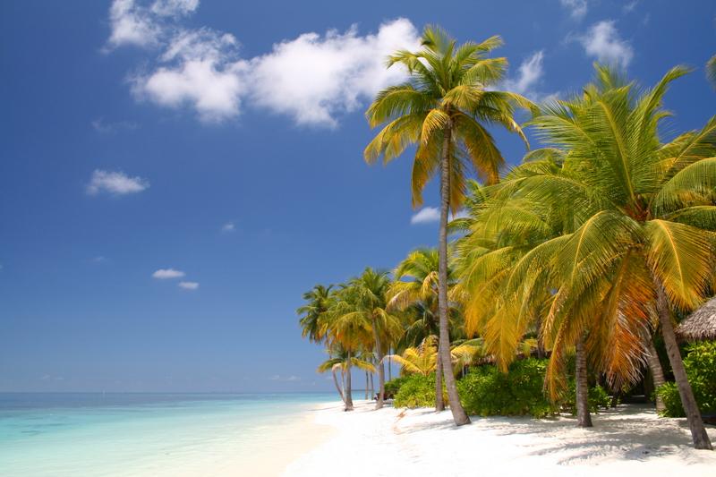 Maldives Best Island With Amazing Beaches World