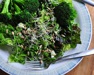 Lemony Broccoli & Lemon Vinaigrette in an Easy Supper Salad