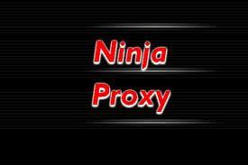 نينجا بروكسي لفتح المواقع المحجوبة