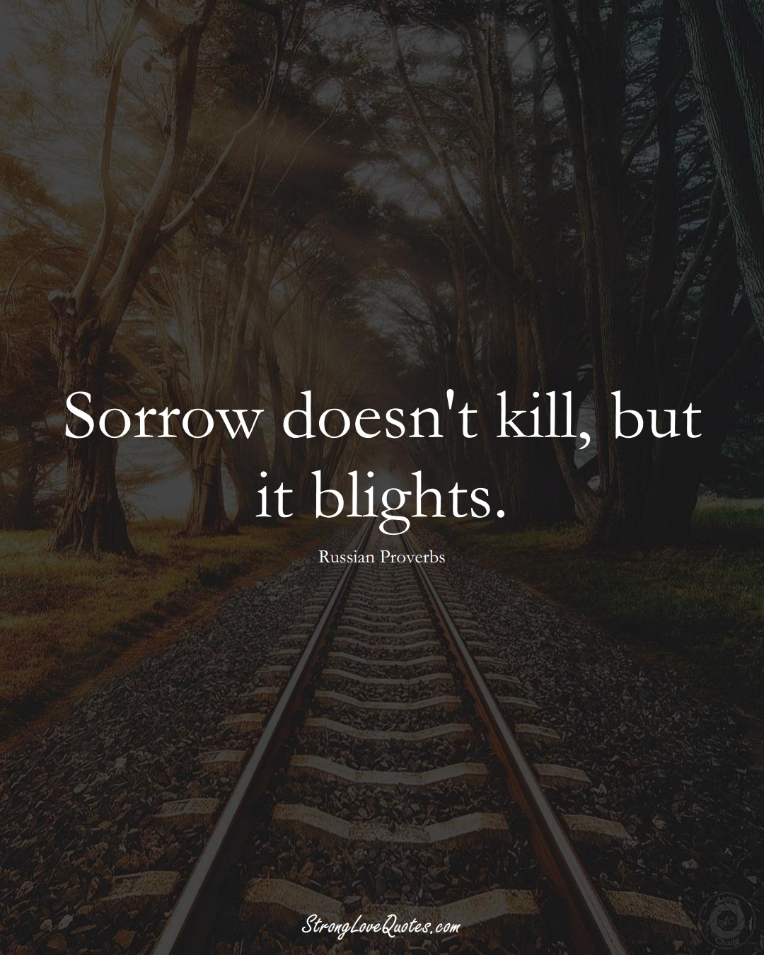 Sorrow doesn't kill, but it blights. (Russian Sayings);  #AsianSayings