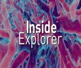 inside-explorer