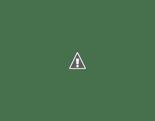 Edward Van Sloan and Bela Lugosi