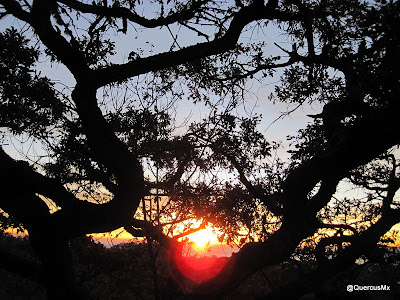 Amanecer en la Sierra de la Viga