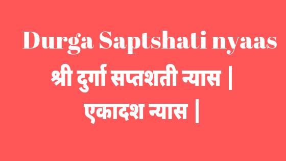 एकादश न्यास विधि | Durga saptshati nyaas | Ekadash nyaas vidhi |