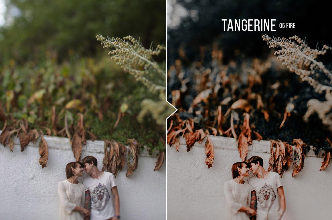 Tangerine Portrait Presets for Lightroom & ACR (LR, XMP)