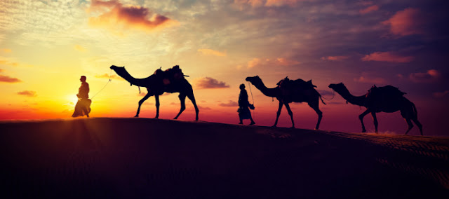 Embark On An Exciting Journey To Rajasthan For Winter