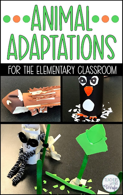 Animal Adaptations! Students listen to or view a picture book about animal features and then design a model with an adaptation. The resource includes a teacher's guide, photos, lab sheet, and a scoring rubric. #STEM #elementary #animaladaptations