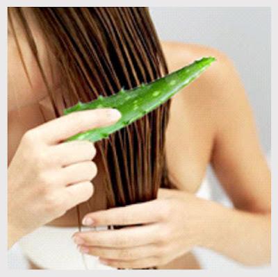 Use Aloe Vera Gel