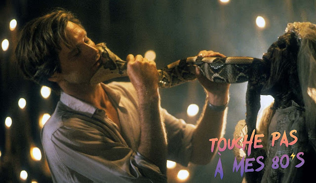http://fuckingcinephiles.blogspot.com/2020/02/touche-pas-mes-80s-102-serpent-and.html