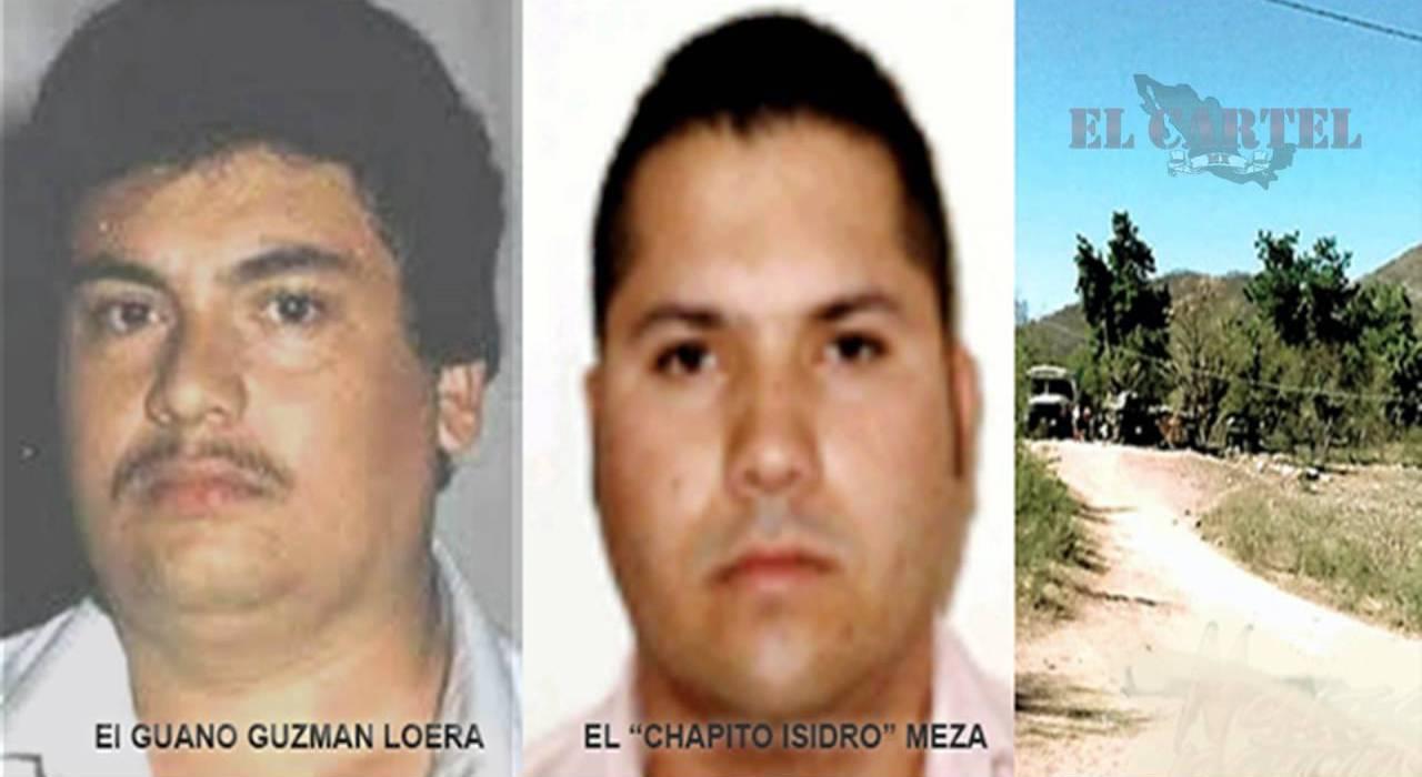 """Nueva alianza entre, El Chapito Isidro, y """"El Guano"""" Vs hijos del Chapo Guzmán"""