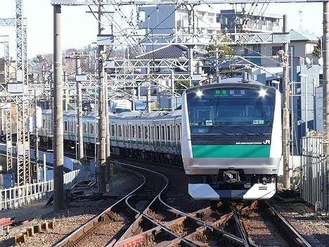 【ダイヤ改正で新設!】E233系の特急 新宿行き