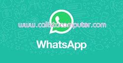 Download WhatsApp 0.3.4941 Dekstop Version