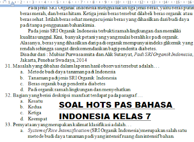 GAMBAR SOAL PAS HOTS BAHASA INDONESIA KELAS 7