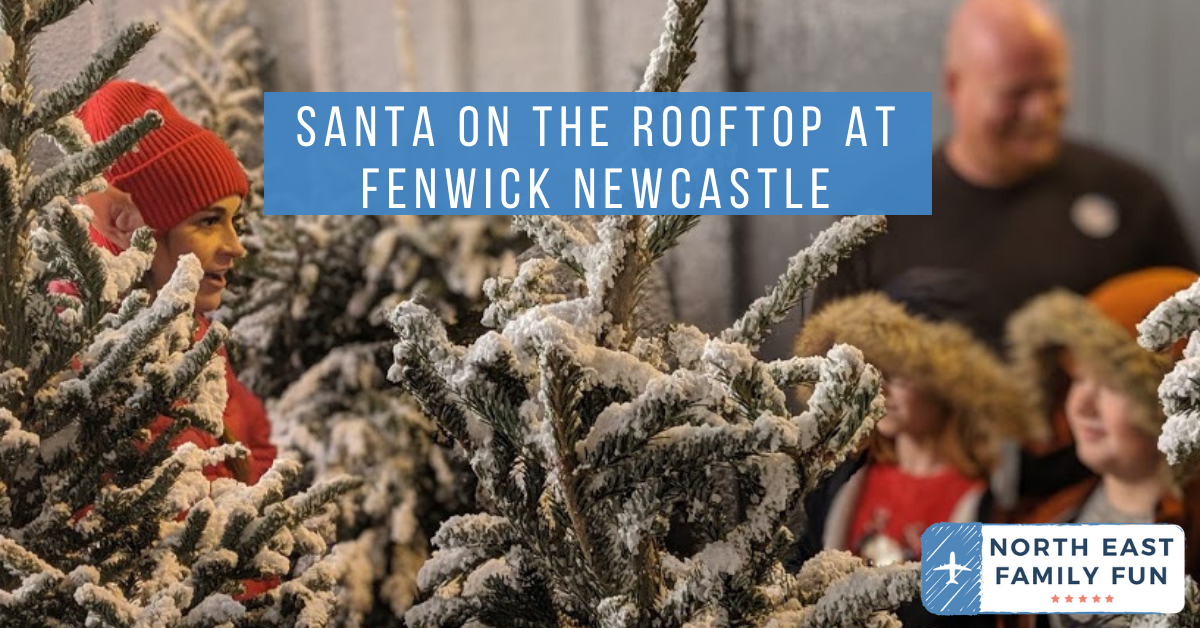 Santa on the Rooftop at Fenwick Newcastle Review