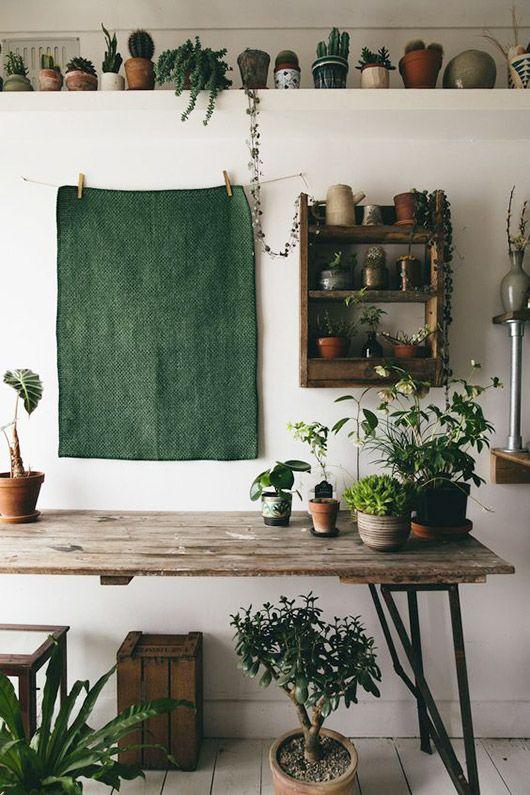 For my home id e d co 24 une touche de vert dans ma for Laure de flores linge de maison